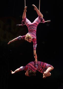 Trapèze de cirque. Source : http://data.abuledu.org/URI/503a4073-trapeze-de-cirque