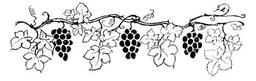 Treille de vigne. Source : http://data.abuledu.org/URI/517d3254-treille-de-vigne