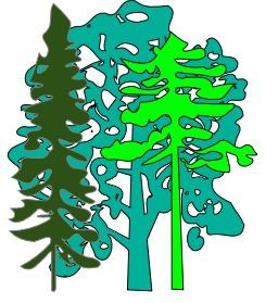 Trois arbres. Source : http://data.abuledu.org/URI/50df7a87-trois-arbres