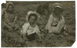 Trois fillettes américaines au travail. Source : http://data.abuledu.org/URI/5262b216-trois-fillettes-americaines-au-travail