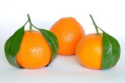 Trois mandarines. Source : http://data.abuledu.org/URI/52bf1ac3-trois-mandarines