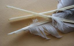 Trois plumes d'oie. Source : http://data.abuledu.org/URI/519e6648-trois-plumes-d-oie