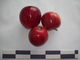 Trois pommes. Source : http://data.abuledu.org/URI/53427b53-trois-pommes