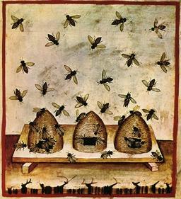 Trois ruches médiévales avec abeilles. Source : http://data.abuledu.org/URI/50c8d9bc-trois-ruches-medievales-avec-abeilles