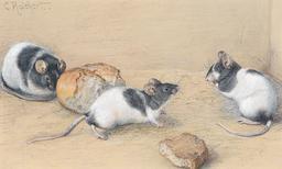 Trois souris. Source : http://data.abuledu.org/URI/52ed40dc-trois-souris