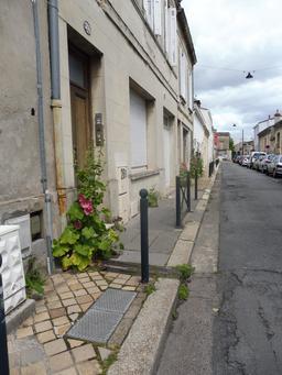 Trottoir fleuri à Bordeaux-Belcier. Source : http://data.abuledu.org/URI/5920c29e-trottoir-fleuri-a-bordeaux-belcier
