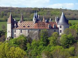 Tuiles vernissées du Château de La Rochepot. Source : http://data.abuledu.org/URI/54a7bf56-tuiles-vernissees-du-chateau-de-la-rochepot