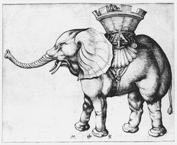 Un éléphant. Source : http://data.abuledu.org/URI/51a8e44d-un-elephant