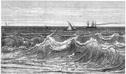 Vagues se brisant au rivage. Source : http://data.abuledu.org/URI/52b6db5e-vagues-se-brisant-au-rivage
