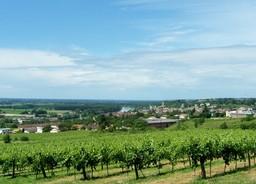 Vallée de la Garonne, à hauteur de La Réole. Source : http://data.abuledu.org/URI/5019a8dc-vallee-de-la-garonne-a-hauteur-de-la-reole