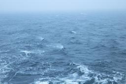 Vent et brouillard sur le golfe de Finlande. Source : http://data.abuledu.org/URI/54cce64b-vent-et-brouillard-sur-le-golfe-de-finlande