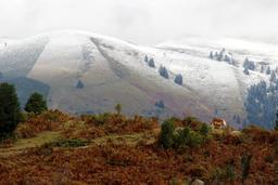 Versants enneigés ou pas dans la vallée d'Aure. Source : http://data.abuledu.org/URI/54b8402a-versants-enneiges-ou-pas-dans-la-vallee-d-aure