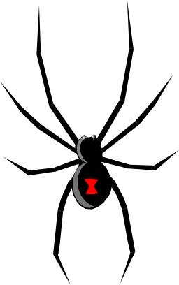 Veuve noire. Source : http://data.abuledu.org/URI/504a3b44-veuve-noire