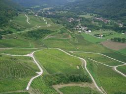 Vignoble de Château-Chalon en Jura. Source : http://data.abuledu.org/URI/5273df71-vignoble-de-chateau-chalon-en-jura