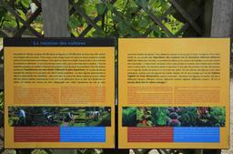 Villandry, le jardin potager. Source : http://data.abuledu.org/URI/55e754e0-villandry-le-jardin-potager