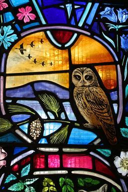 Vitrail aux oiseaux sauvages en Écosse. Source : http://data.abuledu.org/URI/5353b1fd-vitrail-aux-oiseaux-sauvages-en-ecosse