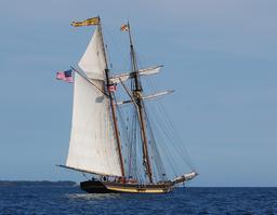 Voilier Pride of Baltimore II. Source : http://data.abuledu.org/URI/501b0aec-voilier-pride-of-baltimore-ii