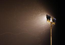 Vols d'insectes de nuit. Source : http://data.abuledu.org/URI/594a946a-vols-d-insectes-de-nuit