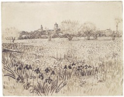 Vue d'Arles avec iris au premier plan au mois de mai. Source : http://data.abuledu.org/URI/5515cae1-vue-d-arles-avec-iris-au-premier-plan-au-mois-de-mai