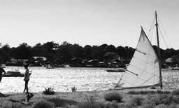 Vue sur le Bassin d'Arcachon. Source : http://data.abuledu.org/URI/55a5f99a-vue-sur-le-bassin-d-arcachon