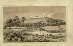 Waiakea en 1854. Source : http://data.abuledu.org/URI/5093c52f-waiakea-en-1854