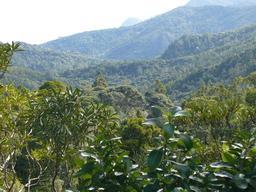 Waitakere Range Park. Source : http://data.abuledu.org/URI/50879463-waitakere-range-park