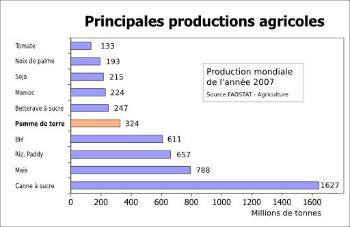 10 Principales cultures agricoles en 2007
