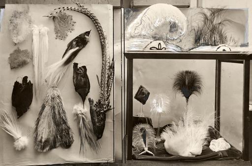 Accessoires en plumes d'autruche en 1919