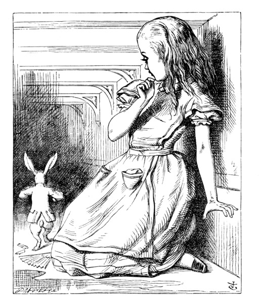 Alice fait peur au lapin blanc