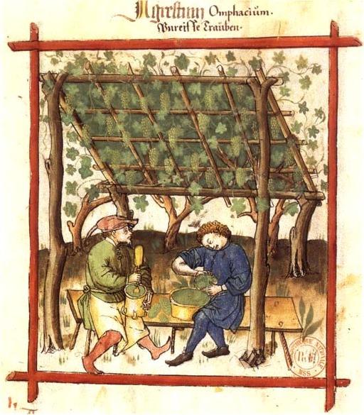 Alimentation au Moyen Age : fabrication du verjus