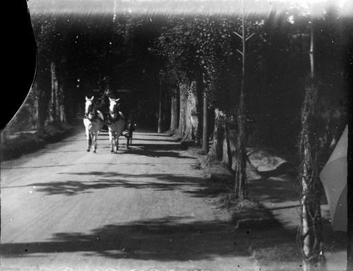 Allée de la Pique à Luchon, en 1895