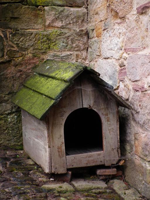Ancienne niche dans une cour