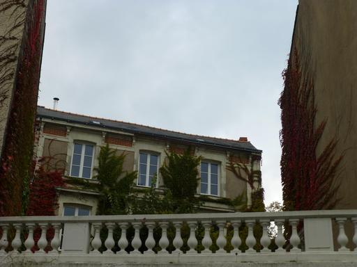 Angers, Couleurs d'automne