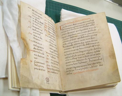 Manuscrit médiéval du livre de cuisine d'Apicius