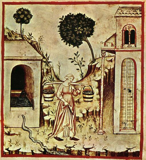 Approvisionnement en eau douce au Moyen Age