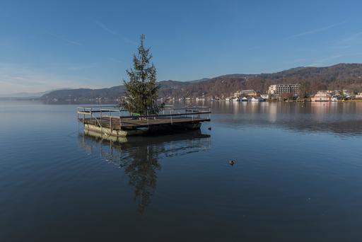 Arbre de Noël flottant