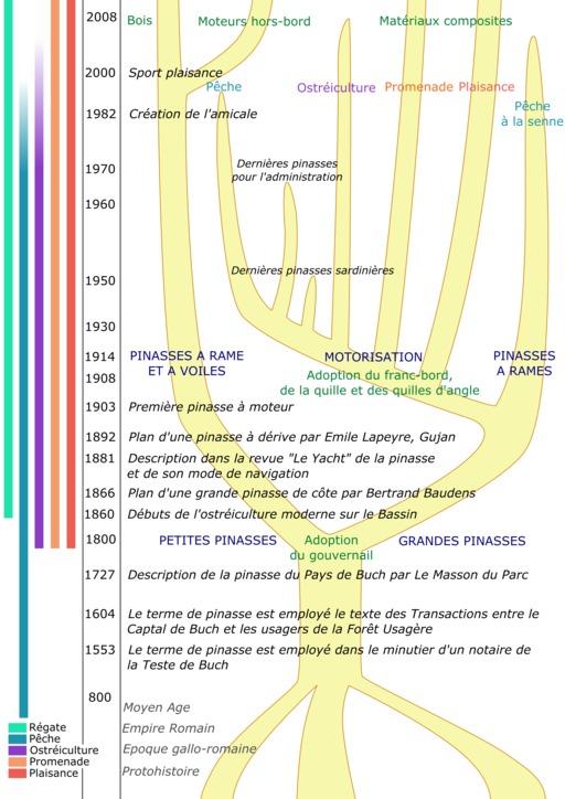 Arbre Généalogique de la Pinasse
