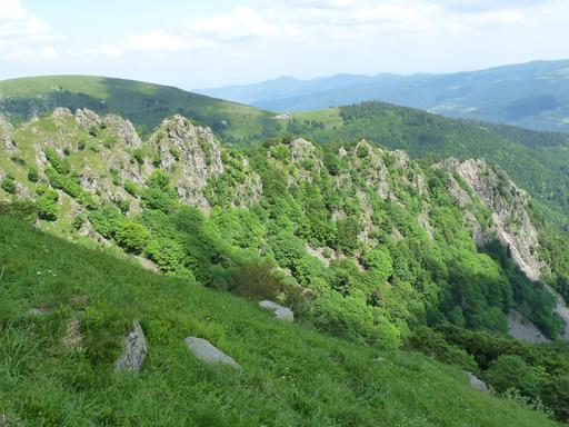 Arête du Spitzkopf dans les Vosges