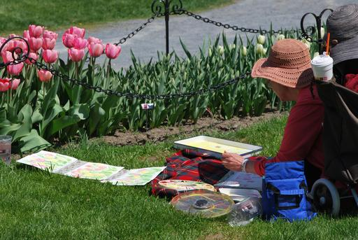 Artiste dessinant des tulipes