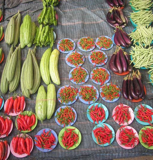 Aubergines bio en Argentine