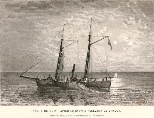 Aviso relevant son chalut de nuit en 1866