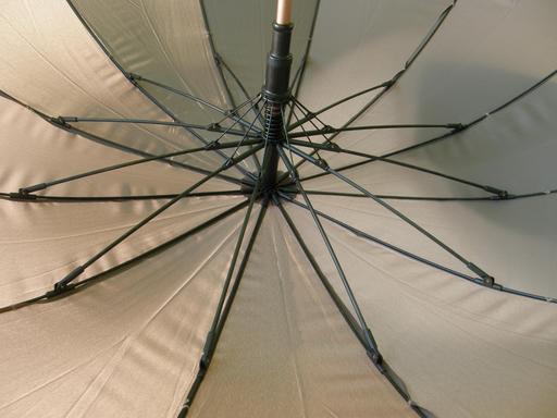 Baleines de parapluie ouvert