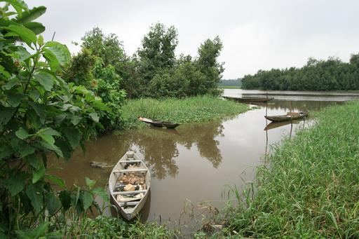 Barques de pêcheurs près de Douala