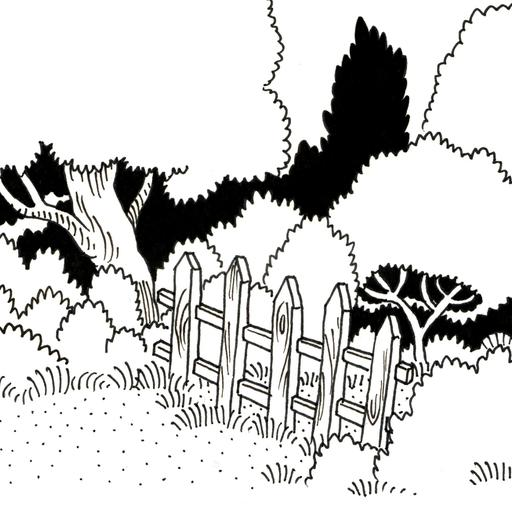 Barrière à l'entrée de la forêt