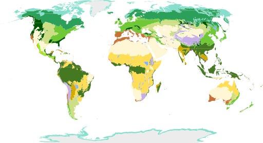 Biomes terrestres selon le WWF