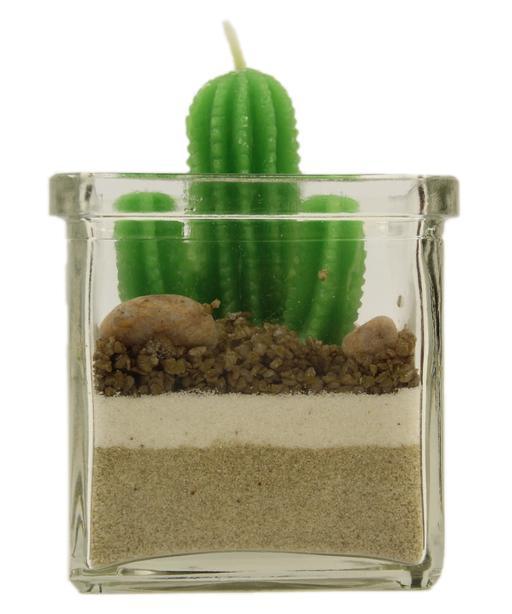 Bougie verte en forme de cactus