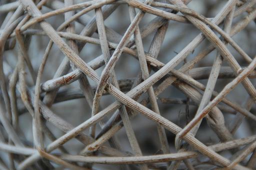 Branches tressées