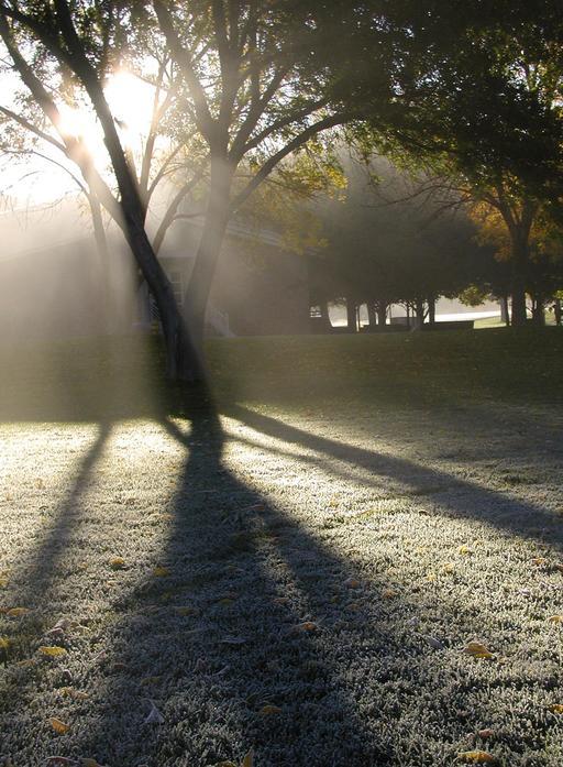 Brume et soleil un matin d'hiver