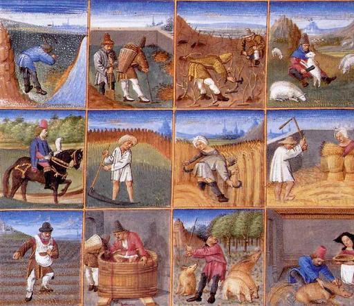 Calendrier des travaux agricoles