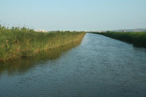 Canal d'irrigation agricole à Valence